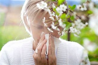 Image: Woman with Hayfever