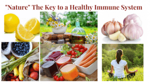 Getting back to Nature. All that is Natural to prevent & overcome disease - Building a Super Immune System