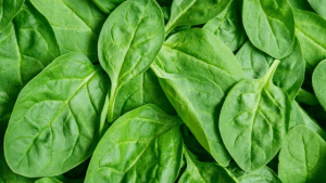 Baby Spinach for the reduction of inflammation improving conditions such as arthritis