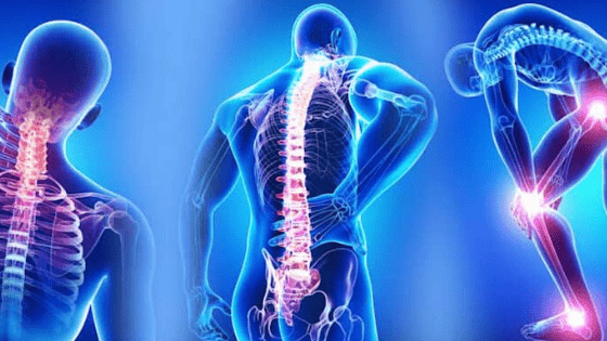 Muscle & Joint Pain - Uric Acid Build up