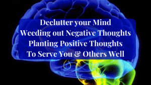 Declutter-your-Mind-Weeding-out-Negative-Thoughts-Planting Positive Thoughts to Serve You and Others Well
