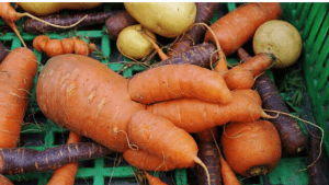 Wonky-Vegetables-Fruit-Great-for-your-Health-your-Budget