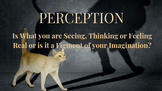 Perception is - What you are Seeing, Thinking or feeling. Real or is it a Figment of your imagination