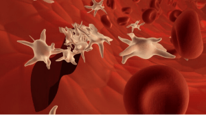 Improving your Blood Platelet Count