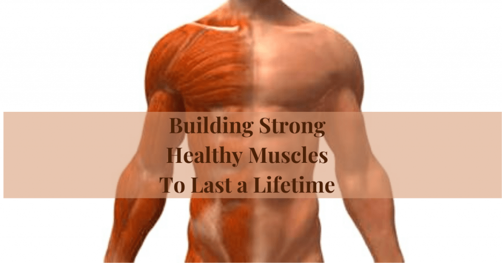 Building Strong Healthy Muscles To Last a Lifetime