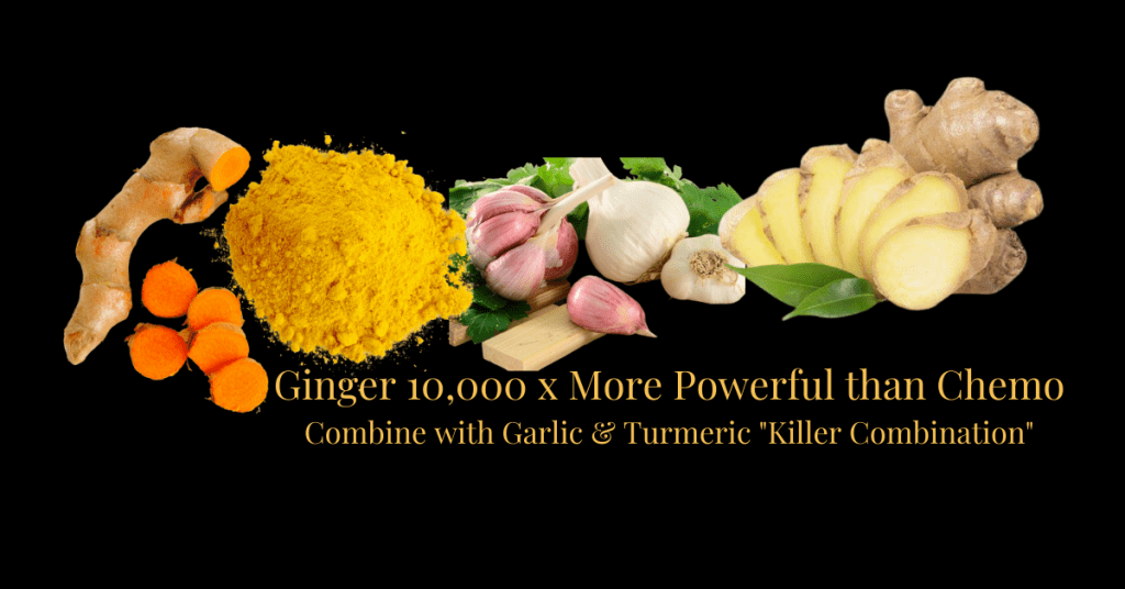 Ginger-More-Powerful-than-Chemo-for-Cancer