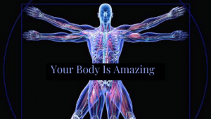 Your Body is Amazing Learning How to care for you Body