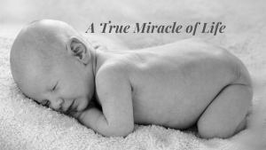 A Newborn Baby: A True Miracle of Life