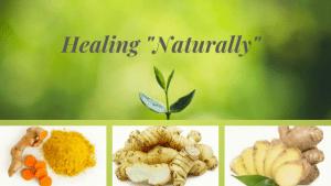 Turmeric-Ginger-Galangal-Healing-Naturally