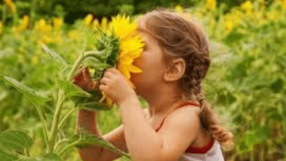 Nature Deficit Disorder is a Rising Concern for our Children's Healthy Future