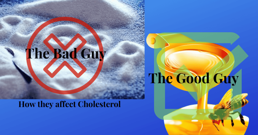 Cholesterol Sugar the Bad Guy Honey the Good Guy