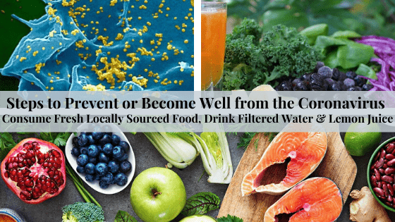 Coronavirus Steps to Prevention & Recovery