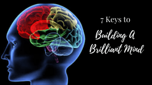 7 Keys to Building a Brilliant Mind